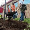Tribune-Star/Jim Avelis<br /> Mulches grassiness: Terre Town Elementary 5th grader Tucker Carson spreads mulch around the base of the school's new flowering crab apple tree Friday afternoon. The tree planting was part of the school's Arbor Day celebration.