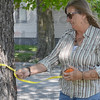 """Tribune-Star/Jim Avelis<br /> Evaluations: Terre Haute city forester Sheryle Dell demonstrates the process of evaluating a tree. In addition to measuring the """"diameter at breast height"""" a visual examination of the base and roots of the tree and looking up at the crown are part of the process."""