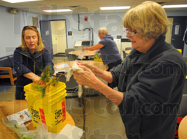 Tribune-Star/Jim Avelis<br /> Light work: Trees Inc. members Cheri Bradley, Stephanie Krull and Mary Harris separate and individually wrap seedling for distribution at today's Earth Day activities on the Indiana State university campus.