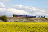 30 April 2012 :: 165123 at South Moreton
