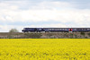 30 April 2012 :: A First Great Western HST at South Moreton