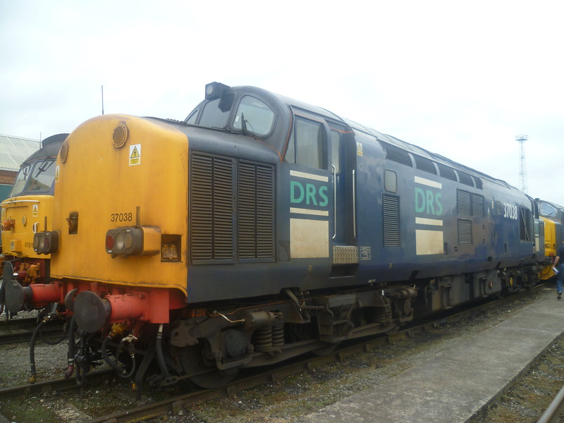 DRS class 37 no. 37038 at the Crewe Gresty Bridge depot open day, 18/08/2012.