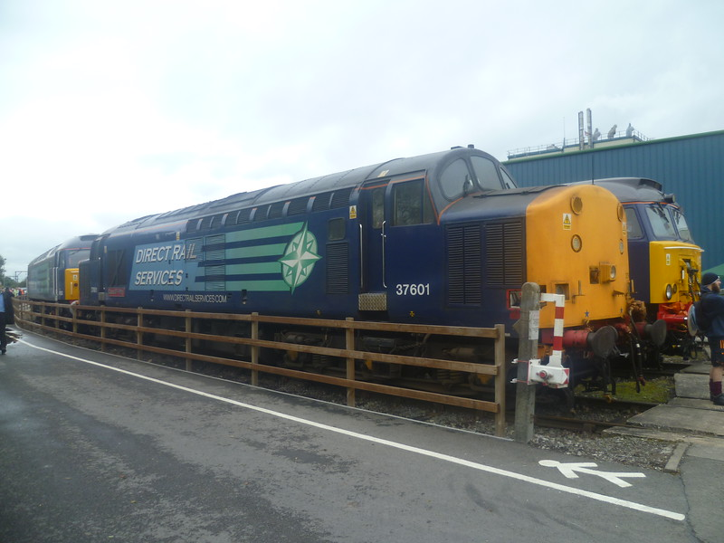 DRS Class 37 no. 37601 at Gresty Bridge depot, Crewe.