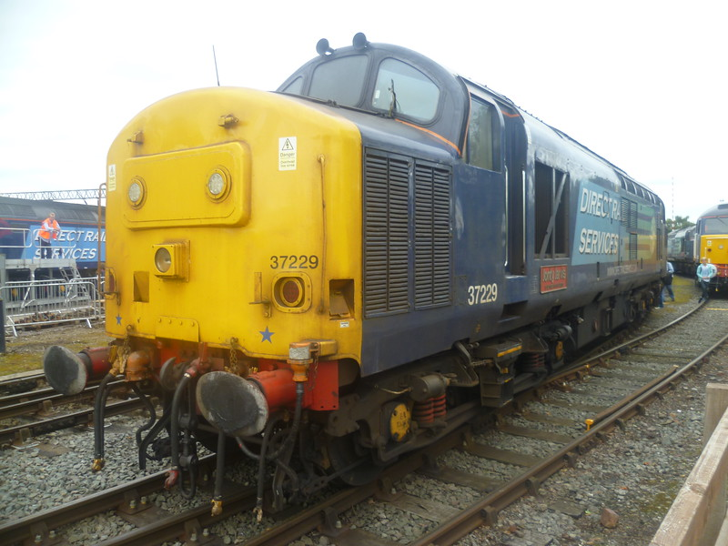 DRS Class 37 no. 37229 at Gresty Bridge depot, Crewe.