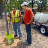 Accurate: Terre Haute city employees Mike Curtis and Dan Debard use buckets to measure 6 gallons of water for trees along Ohio Boulevard Friday afternoon. They refill the tank about three times a day during their shift.