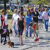 Tribune-Star/Jim Avelis<br /> Woof: This year's Bark in the Park raised nearly $11,000 for the Terre Haute Humane Society.