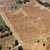 Tribune-Star/Joseph C. Garza<br /> Definitely an emergency: Farm land in western Vigo County shows the effects of this summer's drought.