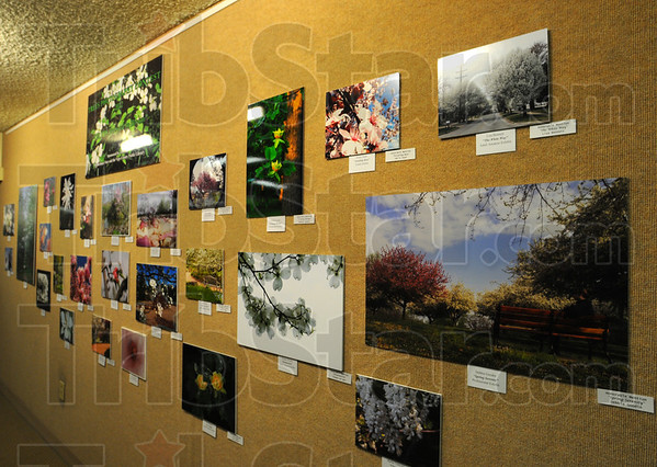 Tribune-Star/Jim Avelis<br /> On exhibit: Winning photographs in the TREES Inc. photography contest are on display in the Vigo County Library. The nine top winners can be seen online at tribstar.com.