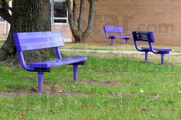 Tribune-Star/Jim Avelis<br /> Transplants: Benches from Chauncey Rose Middle School have found a new home, and color, in front of Otter Creek Middle School.