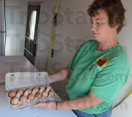 Tribune-Star/Jim Avelis<br /> Good eggs: Joyce Augustus checks the condition of a carton of eggs before selling them to a customer at the mid-week Terre Haute farmer's market. Studies are underway to keep homegrown meats and eggs safe for consumption.