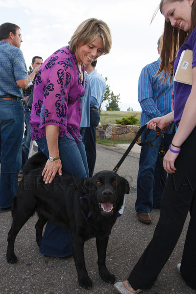 Andrée Braun greets Banshee, a lab mix, handled by Tiffany Deaton.  Lulu's Barkin' BBQ, benefiting the Dumb Friends League Buddy Center in Castle Rock, Colorado, held at the home of Fred and Jana Bartlit in Castle Pines, Colorado, on Saturday, Aug. 18, 2012.<br /> Photo Steve Peterson