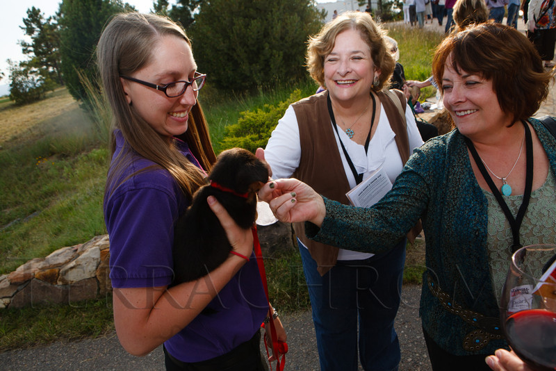 Randa MacMillan and Logan MacMillan greet Cuddles, a 2-month-old chihuahua mix, held by Alicia Hall.  Lulu's Barkin' BBQ, benefiting the Dumb Friends League Buddy Center in Castle Rock, Colorado, held at the home of Fred and Jana Bartlit in Castle Pines, Colorado, on Saturday, Aug. 18, 2012.<br /> Photo Steve Peterson