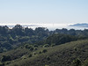 Tilden Park: view of Golden Gate