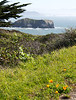 Marin Headlands: Rodeo Cove