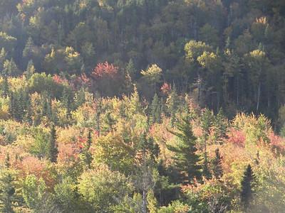 Day Five - Cape Breton Cabot Trail Tour