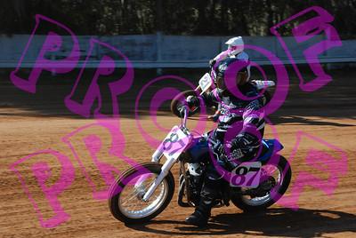 bikes & quads 11-3-2012-016