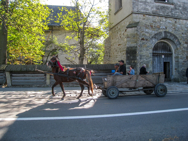 Arbore Church, Bucovina