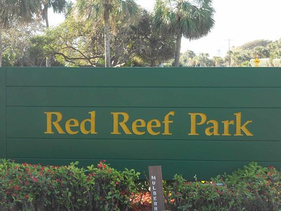 Beach Cleanup at Red Reef Park