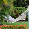 Coronado - hammock in the backyard