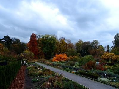 Botanic Garden Cracow autumn 2012