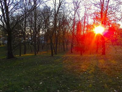 Park Cracow autumn 2012