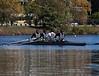 Varsity boat racing
