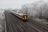 12 December 2012 ::159011 at Worting with a hoar frost in evidence on the trees