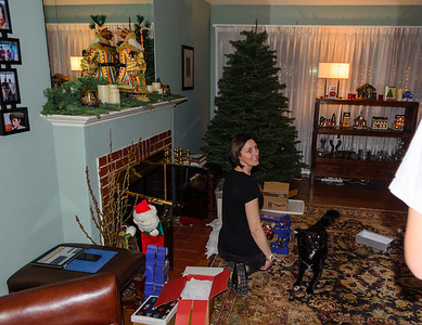 Decorating The Christmas Tree 2012