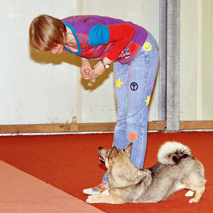 Dogdance-wedstrijd Biddinghuizen ~ 17 mei 2012