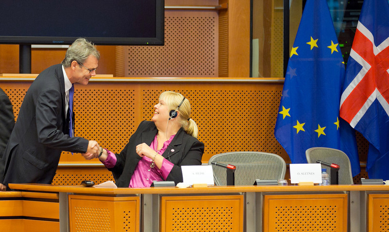 Anna Hedh, MEP, and Ambassador Atle Leikvoll, President-in-Office of the EEA Joint Committee