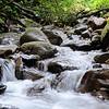 Panama - stream by El Macho