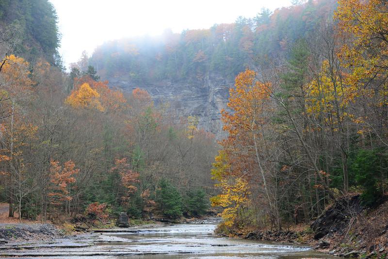 Taughannock creek in Ulysses, NY.