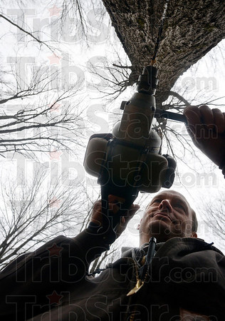 Tribune-Star/Joseph C. Garza<br /> Tapping into sweetness: Vigo County Parks and Recreation Department employee Henry Voges taps into a maple tree at Prairie Creek Park Thursday. Lines