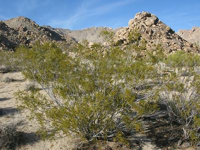 Granite mountain foothills rock piles.