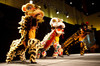 Dragon Dance.  The 10th Annual Chinese New Year Gala, benefiting the Nathan Yip Foundation, at Denver Marriott Tech Center in Denver, Colorado, on Saturday, Jan. 28, 2012.<br /> Photo Steve Peterson