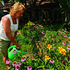 Tribune-Star/Joseph C. Garza<br /> Hydrating the habitat: Ellen Urbanski waters her flowers at her home's backyard Friday, July 6.