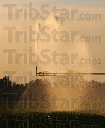 Tribune-Star/Jim Avelis<br /> Sustaining flow: Irrigation sprinklers water corn fields near the Indiana-Illinios state line on US 150 earlier this month. Lack of rain has caused farmers to go to the added expense of irrigation in order to produce a crop.