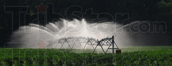 Tribune-Star/Jim Avelis<br /> Necessary expense: Irrigation sprinklers spray water over Bill Lane's fields just south of Rosedale early last week. Pumping out 550 gallons per minute, it takes 45 hours to spread one inch of water.