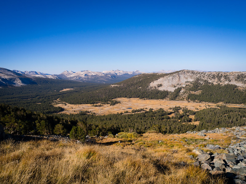 Dana Meadows view