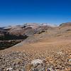 Scree on Mt. Dana