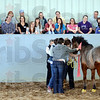 Tribune-Star/Jim Avelis<br /> Teamwork: St. Mary-of-the-Woods held a career fair Wednesday at their  Mari Hulman George School of Equine Studies. Presentations on using horses in working with troubled youth and in team-building exercise were part of the day.