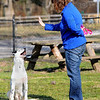 Tribune-Star/Jim Avelis<br /> Lessons: Maggie Wheeler uses hand signals to teach Pongo basic commands. She thinks the shelter pet may have hearing difficulties, so she is using the visual method of teaching.