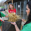 Tribune-Star/Jim Avelis<br /> Pitching in: Oklahoma University students Gabby Nino, Theresa James and Melissa Borja work together to clean the outdoor kennels at the Humane Society Monday morning. They were part of a group of OU students taking an Alternate Spring Break. Before arriving in Terre Haute, they had work with Habitat for Humanity in Springfield Missouri and at a youth club in St. Louis.