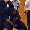 Tribune-Star/Joseph C. Garza<br /> Looking for something to sink his teeth into: Terre Haute Police Department K-9 Officer Diesel tries to get a hold of the unit's new bite suit as handler Sgt. Todd Haller keeps a close eye on the situation Monday at Sarah Scott Middle School. Wearing the suit is the school's librarian/media specialist Tony Smodilla.