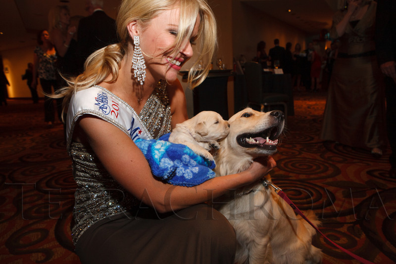 "Diana Dreman (Miss Colorado 2011) and Brooklyn, mother of the golden retriever puppy, yet to be named.  Hope Ball, themed ""Dedicated to the Ones We Love,"" benefiting the Cancer League of Colorado, at the Hyatt Regency Denver Tech Center in Denver, Colorado, on Saturday, May 5, 2012.<br /> Photo Steve Peterson"