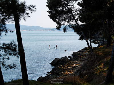 06/03 - St Mitre - Massane , les Heures Claires et retour