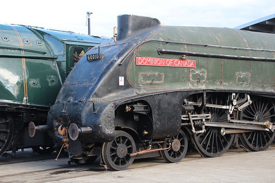 60008 'Dwight D Eisenhower' & 60010 'Dominion of Canada' sit outside Shildon 20/10/12.