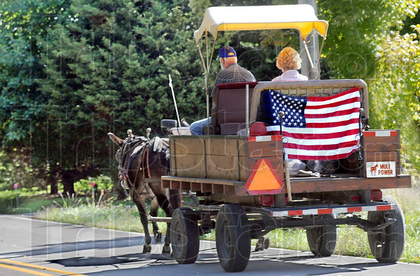 Patriots: Steve and Carla Sankey of Terre Haute drive their mule team down Haven Hill Road Sunday afternoon enroute to the Cory Apple Festival.