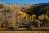 Around the Stoner Ranch area near Dolores, Colorado, on Sunday, Oct. 7, 2012.<br /> Photo Steve Peterson