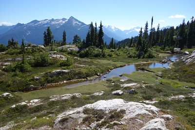 Strolling about 700 vertical feet down the east ridge after lunch brought me to a tiny unnamed lake.
